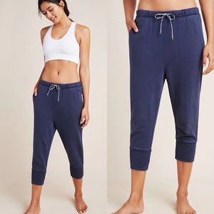 Free People Counterpunch Cropped Blue Joggers S